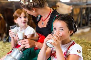 bayern family drinks milk in the cowの写真素材 [FYI00696152]