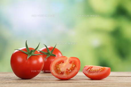 tomatoes in summer with copy spaceの写真素材 [FYI00697036]