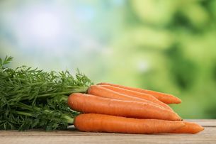 carrots or carrots in the summer with copy spaceの写真素材 [FYI00697045]
