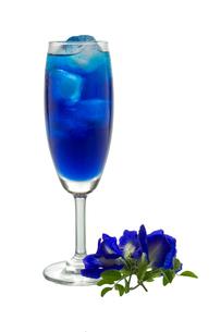 drinksの写真素材 [FYI00697538]