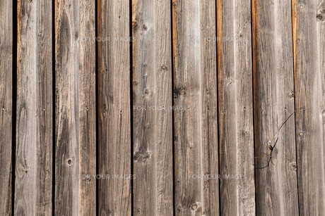 wall with planks of woodの素材 [FYI00697578]