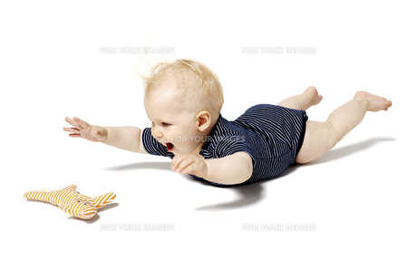 baby playing with cat toyの写真素材 [FYI00697591]