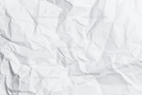 macroの素材 [FYI00697762]