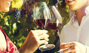 woman and man in the vineyard drinking wineの写真素材 [FYI00697811]