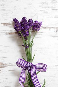 lavenderの素材 [FYI00697911]