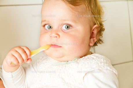 infant with toothbrushの写真素材 [FYI00699291]