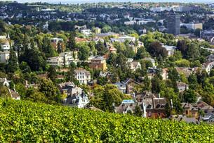 wiesbaden,views of the city from nerobergの写真素材 [FYI00699597]
