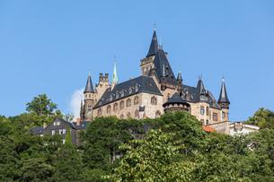 overlooking the castle wernigerodeの写真素材 [FYI00699632]