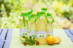 lemon syrupの写真素材 [FYI00700003]