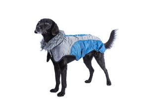 raincoatの素材 [FYI00700872]