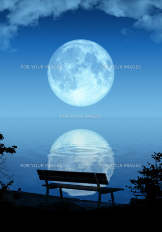 full moonの写真素材 [FYI00701602]