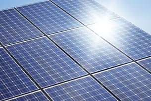 solar plantの素材 [FYI00701625]