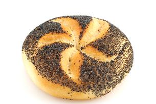 mohnbr?tchen / puppy bread rollの写真素材 [FYI00701790]