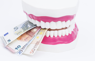 tooth model with moneyの写真素材 [FYI00702610]