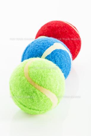 tennis balls for animalsの素材 [FYI00702921]