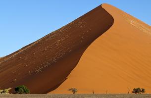 namib-naukluft national parkの写真素材 [FYI00703174]