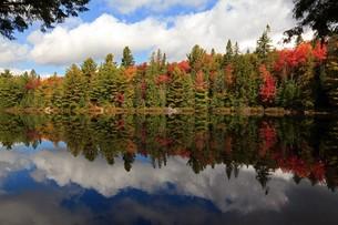 autumn foliage hot spotの写真素材 [FYI00703192]