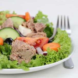 salad with tuna on plateの写真素材 [FYI00704827]