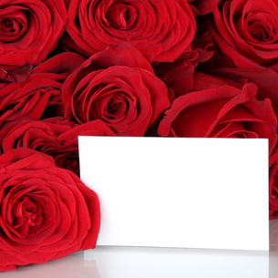 red roses for valentine's day or mother's day with an empty plate and copy space for your own textの写真素材 [FYI00704834]