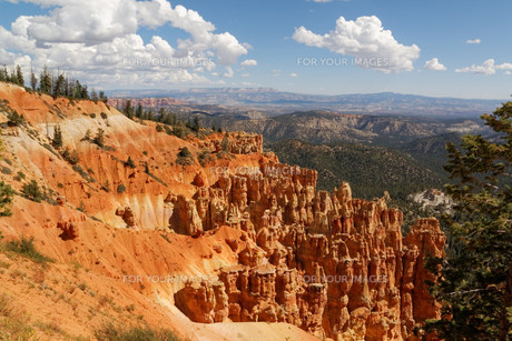 bryce canyon national parkの写真素材 [FYI00704864]