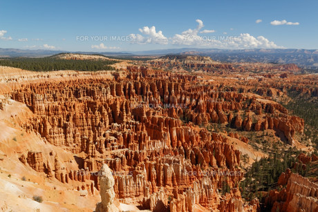 bryce canyon national parkの写真素材 [FYI00704865]