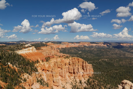 bryce canyon national parkの写真素材 [FYI00704866]