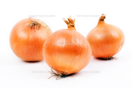 fresh onions on a white backgroundの写真素材 [FYI00704984]