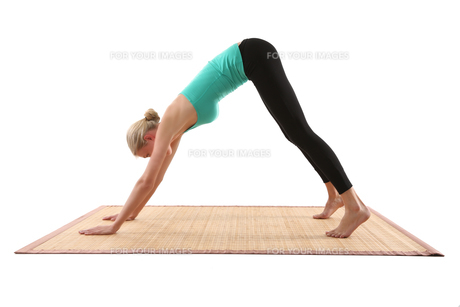 young woman doing yogaの素材 [FYI00707472]