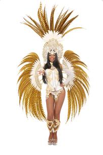 young brazilian samba dancerの写真素材 [FYI00707484]