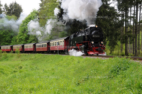 harz narrow gauge railwayの素材 [FYI00707977]