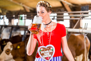 peasant woman drinking beer in the cowshedの写真素材 [FYI00708334]