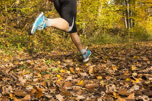 jogger in fallの写真素材 [FYI00708407]