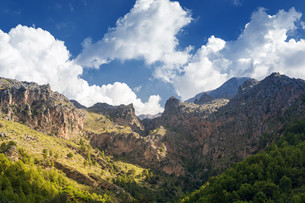 mallorca tramuntana mountainsの写真素材 [FYI00708996]