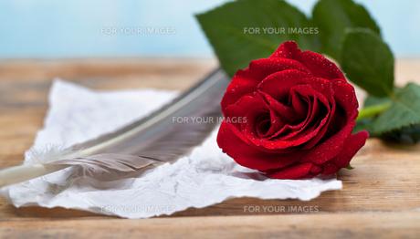 love letterの写真素材 [FYI00709246]