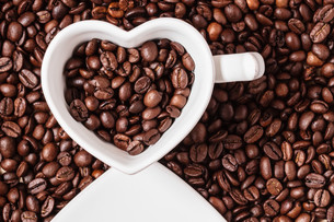white cup on coffee beans backgroundの写真素材 [FYI00709752]