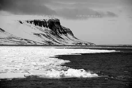 arcticの素材 [FYI00711032]