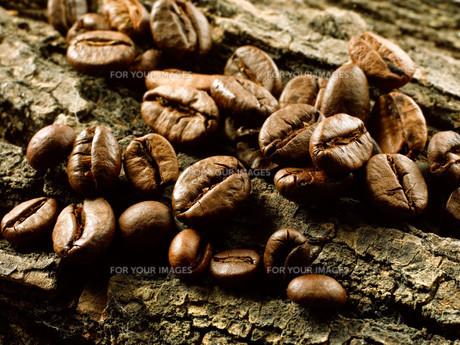 ingredients_spicesの素材 [FYI00711049]