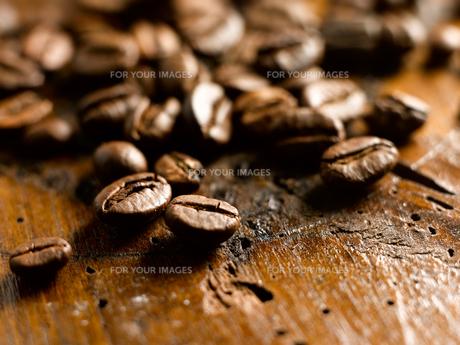 ingredients_spicesの素材 [FYI00711056]
