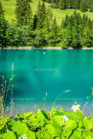 view of beautiful mountain lake. steg,malbun in liechtenstein,europeの素材 [FYI00716971]