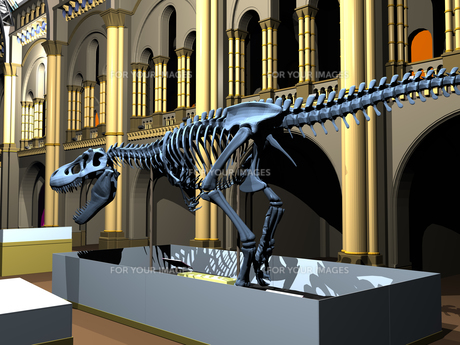 british natural history museum with dinosaur skeletonsの素材 [FYI00718344]