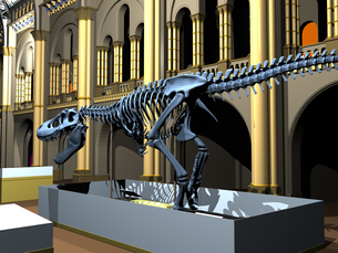 british natural history museum with dinosaur skeletonsの写真素材 [FYI00718344]