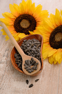 sunflower seedsの写真素材 [FYI00718434]