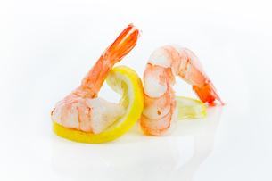 shrimpの写真素材 [FYI00721409]