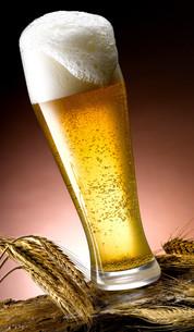 beveragesの写真素材 [FYI00721771]