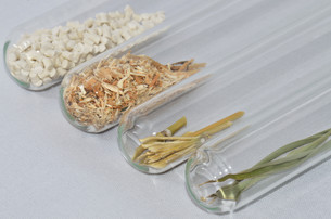 biopolymer with bamboo in the laboratoryの写真素材 [FYI00726003]