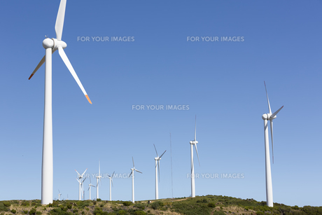 windmills on the island of madeira,portugalの素材 [FYI00727067]