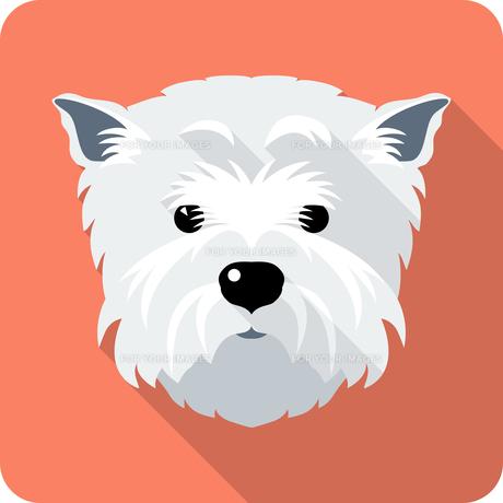 home_animalsの写真素材 [FYI00728799]