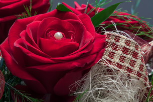 the color of love - red rose with white pearlの写真素材 [FYI00728839]