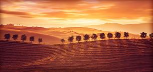 landscapesの写真素材 [FYI00729653]