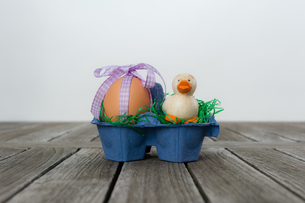 egg with a small duck in an egg carton / nestの素材 [FYI00730576]